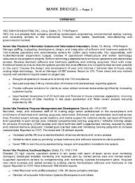 CIO Technology Executive Resume Example Sample Basic Examples Chief Information