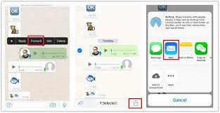 How to Save WhatsApp Voice Messages from iPhone