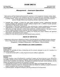 Project Officer Resume Template