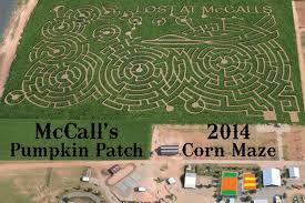 Wheatland Pumpkin Patch by The Top 28 Farms For Fall Fun In The Us 2014 Funtober