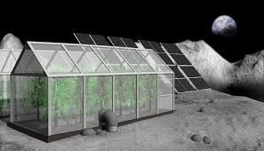 Artists Depiction Of A Pole Colony On The Moon Credit Asa Schultz