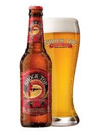 Shock Top Pumpkin Wheat by Shock Top Raspberry Wheat Ale Good If You Are Looking For