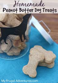 Pet Friendly Christmas Tree Preservative Recipe by Homemade Peanut Butter Dog Biscuits Copycat Milk Bones Recipe