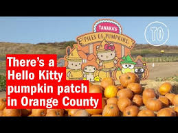Pumpkin Patch Pasadena Area by Best Pumpkin Patches In Los Angeles For Halloween