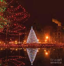 Christmas Tree Shop Syracuse Ny by Syracuse Ny Christmas Tree Photograph By Debra Millet