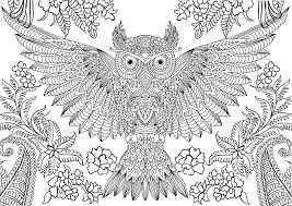 Extraordinary Excellent Hard Color Pages Online Coloring Of Owls A