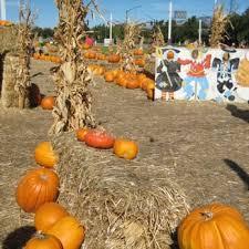 San Jose Pumpkin Patch 2017 by Forest Homes Farms Pumpkin Patch 11 Reviews Farmers Market