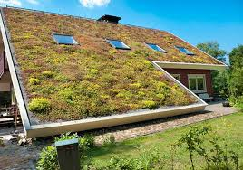 Tile Tech Cool Roof Pavers by Amazing Benefits Of A Living Green Roof Best Pick Reports
