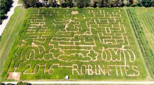 Pahls Pumpkin Patch by The 20 Best Biggest And Scariest Michigan Corn Mazes To Get Lost