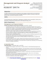 Management And Program Analyst I Resume Example