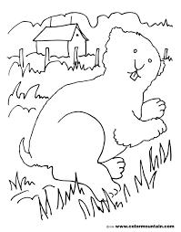 Marmotte 101 Animaux Coloriages à Imprimer