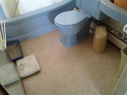 carpet cleaning company in bozeman great falls helena mt rug