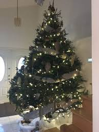 Which Christmas Tree Smells The Best Uk by Best 25 Real Xmas Trees Ideas On Pinterest Alternative
