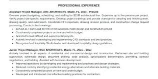 Project Management Resume Buzzwords Junior Manager Example Samples