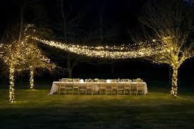 lights lights led string lights artificial