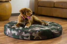 Unchewable Dog Bed by Outdoor Indestructible Pet Bed Chew Proof Dog Bed