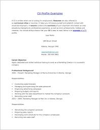 Resume Profile Examples 12498 Professional
