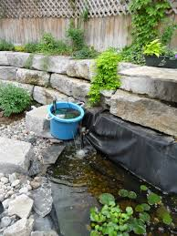 Aquascape Patio Pond Australia by How To Clear Green Pond Water Dengarden