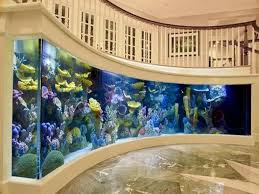 Cool And Luxury Entry Ideas House Room Great Curved Wall Aquarium ... Home Designs Built In Aquarium 4 Homes With Design Focused On Living Room Modern Style For L Tremendous Then Fish Tank Decorations Interior Stunning Ideas Images Best Idea Home Design Cuisine Amazing Decor Gallery Wonderful Bedroom 20 For House Goadesigncom Aquariums Refresh With Different Tropical Vibe Kitchen Decoration Cool The Divine Renovation 35 Youtube Rousing Channel Designsfor Tv Desing Bar Stools Counter Pictures On Wall