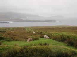 100 Bray Island File636 Head Hike Valentia County Kerryjpg