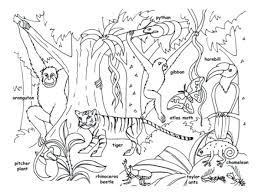 Free Printable Wild Animals Coloring Pages Tropical Jungle And Page Kids Download Anima