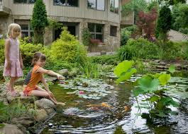 Pond Myth #13|Pond Facts|Pond Contractor|Morris County| - NJ ... 67 Cool Backyard Pond Design Ideas Digs Outdoor With Small House And Planning Ergonomic Waterfall Home Garden Landscaping Around A Pond Flow Back To The Ponds And Waterfalls Call For Free Estimate Of Our Back Yard Koi Designs Febbceede Amys Office Large Backyard Ponds Natural Large Wood Dresser No Experience Necessary 9 Steps Tips To Caring The Idea Pinterest Garden Design