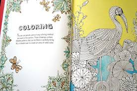 Anti Stress Coloring Book Lets Adults Color In Intricate Patterns