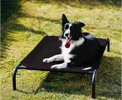 best dog beds your dog s most comfortable place
