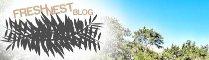 DIY and Home Improvement Blog