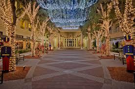 Broadview Christmas Tree Farm by Sw Florida