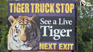 Tiger Kept Gas Station For 16 Years As Tourist Attraction | The ... Shocking Tiger Truck Stop Commercial Youtube New Photos Of 72011 Courtesy M Haik Free Stop Owner Plans To Pursue Another Tiger Stuff Tony For Stops Controversial Mascot Put Rest At The Yes There Really Is A The Stoplive Gas Station Louisiana Famous 2017 September 28 2015 2 Police Truck Carrying Skins From Buddhist Temple Keep Roaring For A Dodo Community Page Is Here Stay Vice