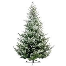 10 Ft Snowy Norway Spruce Tree