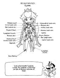 Download Coloring Pages Anatomy Free Futpal Pictures