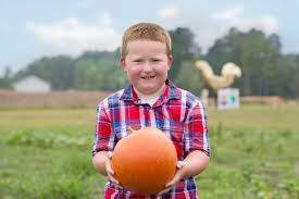 Pumpkin Patch Church Wilmington Nc by Go Chicken Coop Brings A Fall Farm With Family Activities To Leland