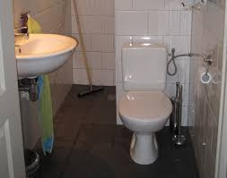 renovierung eines altbaus hebeanlage wc unterstützt