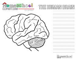 Human Brain Science Notebooking Page
