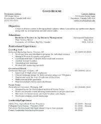 Resume Example For High School Student With No Experience Cover Letter A Highschool Francistan Template