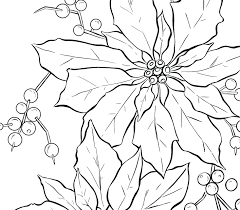 Coloring Pages Online Pokemon Poinsettia Drawing Pattern Line Art For Adults Only Mandala Full Size