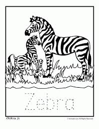 Zoo Animal Coloring Pages Babies