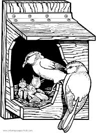 Birdhouse Birds Coloring Sheet Picture