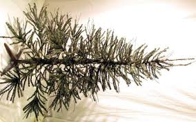 Perfect For An Old Fashioned Christmas This Artificial Rustic