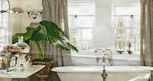 Small Plants For The Bathroom by Bathroom Bathroom Plants