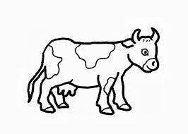 Simple Cow Coloring Sheets Pages