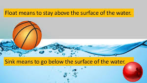 Materials Sink Or Float by Materials That Float And Sink