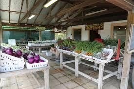 Bishops Pumpkin Farm Employment by Guides Santa Rosa Ca Farms Markets Dave U0027s Travel Corner