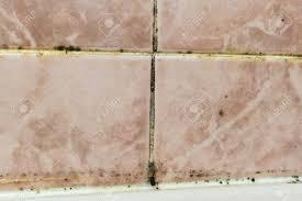 schwarzer schimmel pilz wächst in feuchten schlecht belüfteten badbereich im detail ein unmaintained bad mold fliesenfugen mit pilz durch