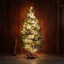 Best Christmas Tree Farms Santa Cruz by Good Willed Tree Hunting Huckberry