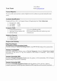 Resume Templates Computer Science Fresh Format For Lecturer In Puter Best Good Large Size
