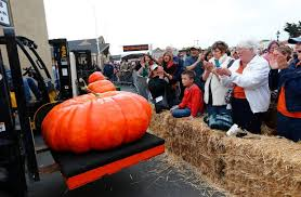Half Moon Bay Pumpkin Patches 2015 by Half Moon Bay 1 910 Pound Winner In Annual Pumpkin Weigh Off