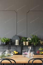 pflanzen auf regalen gegen graue wand mit formteil im esszimmer foto bialasiewicz auf envato elements